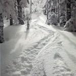 Patagonia Catalog - Cover - Winter 2008